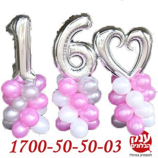 יום הולדת 16