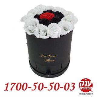 פרחים בקופסא חולון